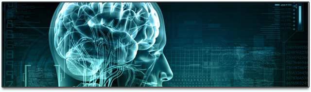 a-djs-brain